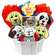 PH132 - Photo Cookies - Puppy Love